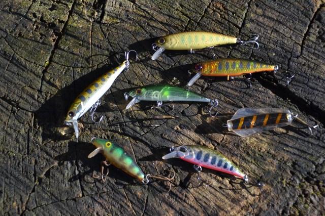 Les poissons nageurs Giq637