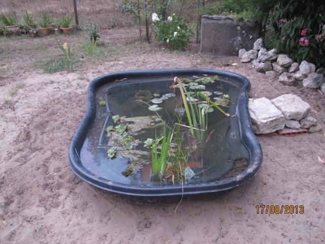 Petit bassin. 7qdcye