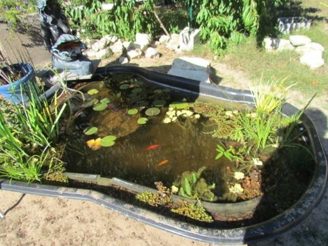 Petit bassin. Q1k2ra