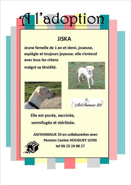 JISKA à l'adoption Ebcnwl