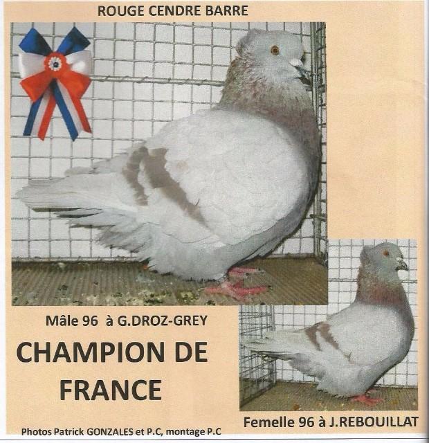 LES CHAMPION DE FRANCE 2014 Hqxikt