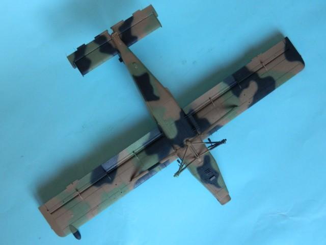 Pilatus PC-6/B2-H4. Roden 1/48.  fini. M52782