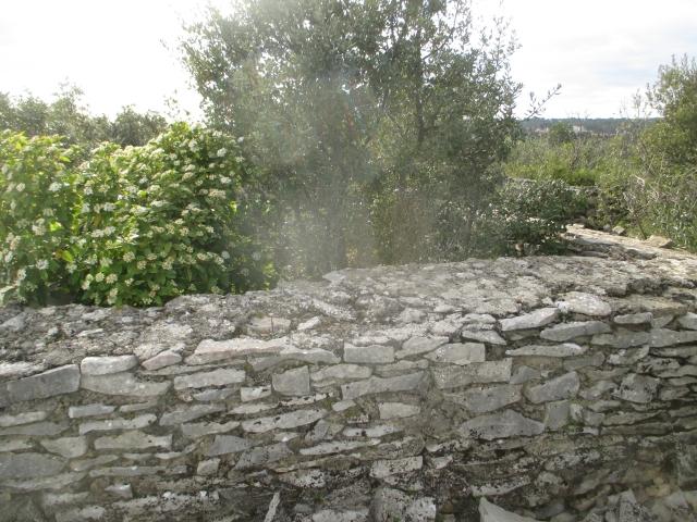 Bunker commandement d'aérodrome : Nîmes - Courbessac (30) M2zaql